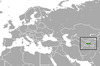 Pamir shrew