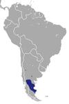 Patagonian opossum