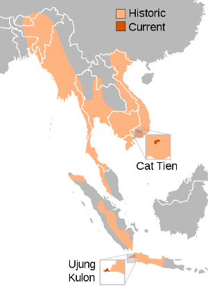 Range of the Javan rhino